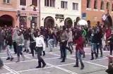 Flash mob în Piaţa Sfatului