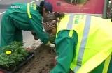 Sărăcia a trimis 30 de mii de braşoveni departe de casă