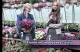 Povesti din Brasov 14.05.2012 p1