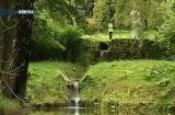 1 Iunie e zi de poveste la Castelul Bran