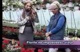 Povesti din Brasov 02.07.2012 p1