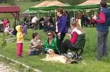 Festivalul ZUP la Rasnov