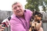 Sterilizare gratuită a câinilor în Săcele!